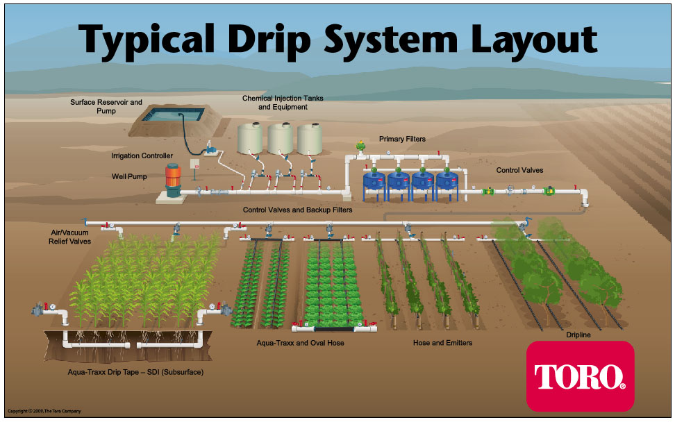Farming News Tour Of Trial Underground Drip Irrigation